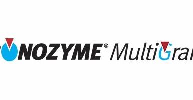 Ronozyme MultiGrain